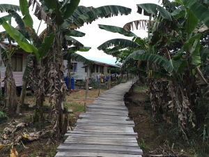 Abai Village